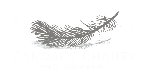 Candace Chaney Photography